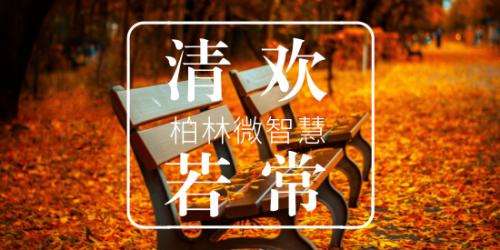柏林微智慧 【第8期】 清欢若常